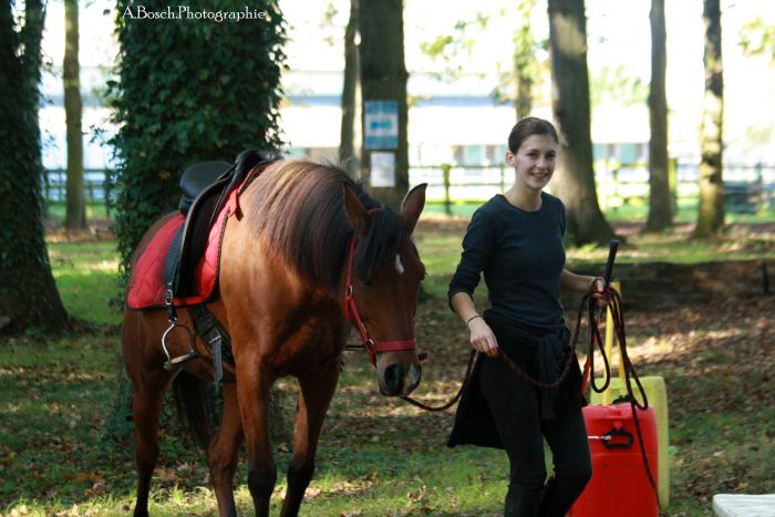 cheval-shaheen-besuperglad